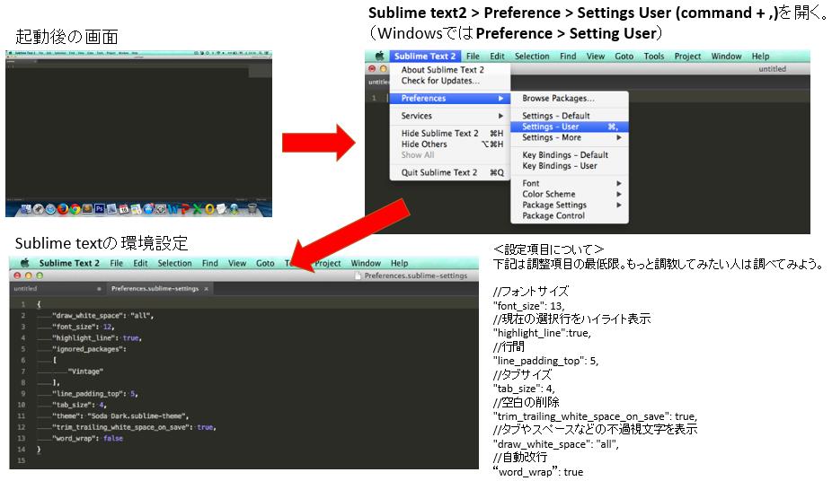 sublime_text5